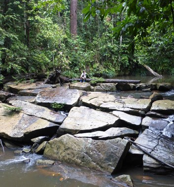 Adventure Alternative Borneo Sabah Agathis camp river.JPG
